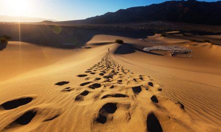 Moïse, l'homme qui a traversé le désert III